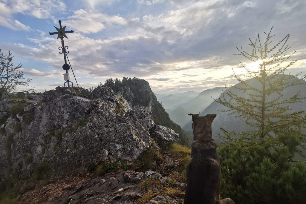 Yoga Retreat in den Bergen mit Hund